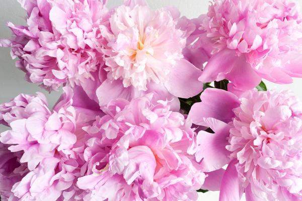 розово