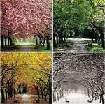 красотата-на-сезоните.-към-природата--поклон!