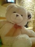 аз-искам-искам-нова-плюшена-мечка