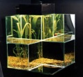 аз-искам-аквариум