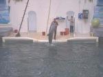 аз-искам-искам-да-заведа-дъщеря-си-в-делфинариума