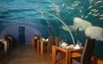 аз-искам-да-обядвам-в-подводния-ресторант-ithaa-остров-рангалис