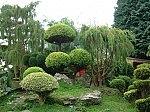 не-искам-да-си-направя-японска-градина-в-двора