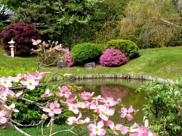 градина-с-много-цветя