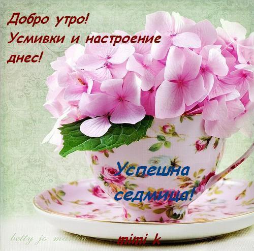 ХУБАВА СЕДМИЦА,УИКЕНД
