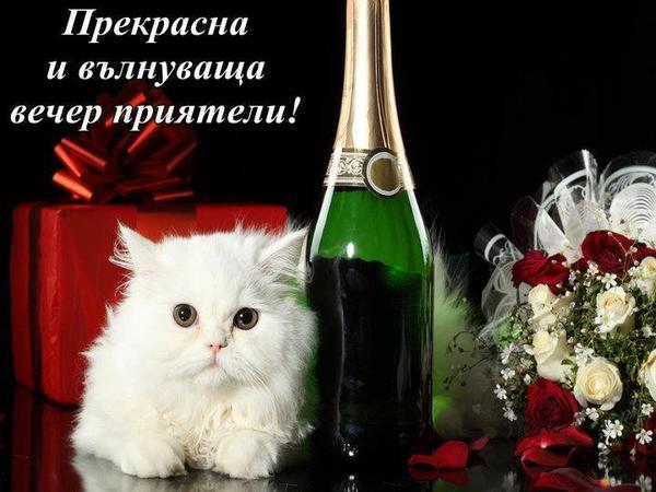 приятна вечер