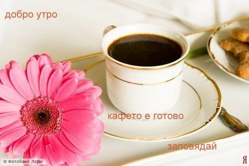 Добро утро 3